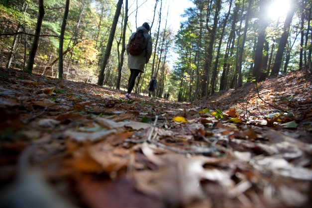 Milton, Mass., Oct. 25, 2014: Harriet Napier of Middlebury, Vt. walks through leaves on a trail in the Blue Hills Reservation, an over 7,000-acre state park that includes parts of Milton, Quincy, Braintree, Canton, Randolph, and Dedham.